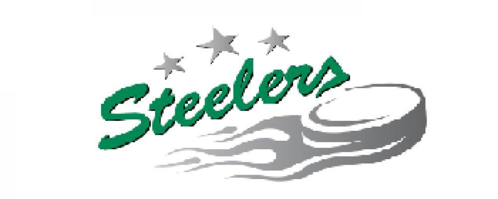 Bietigheim Steelers - Spielplan