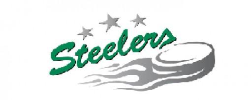 Hockeyweb - Bietigheim Steelers - Spielplan