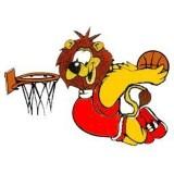 Wasserburger Lions e.V.
