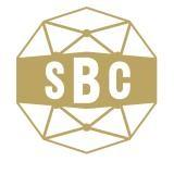 SBC Netzwerk-Treff #1 - Sport als Wertschöpfungsfaktor für die Tourismusregion Steiermark