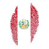 Peru (Fussball)