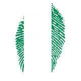 Nigeria 2:0 Island | WM | Gruppe D | 2. Spieltag