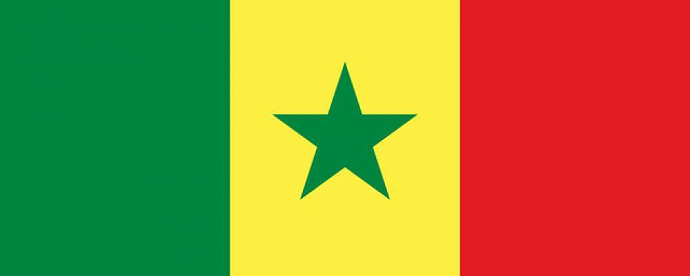 Senegal (Fussball)