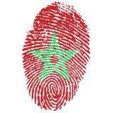 Spanien : Marokko | Gruppe B