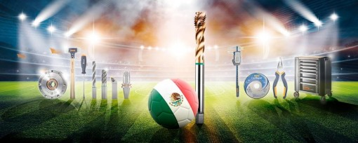 Campeonato Mundial (Español - MX) - Hoffmann Group