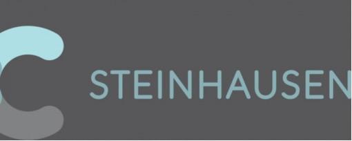 VBC Steinhausen - Vereinsdaten allgemein