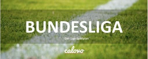 Bundesliga DE