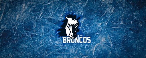 Wipptal Broncos Weihenstephan